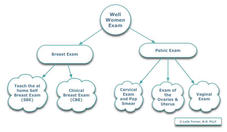Parts of Well Woman's Exam