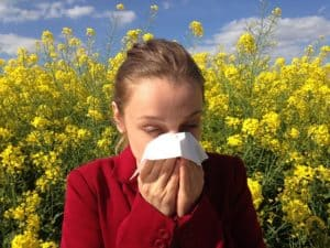 spring and allergies